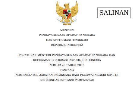 PERMENPAN RB 25/2016 jabatan pelaksana cpns skb