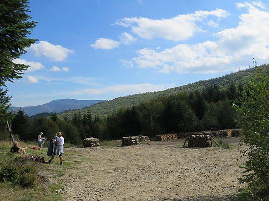 Składowisko drewna na przełęczy Klekociny.