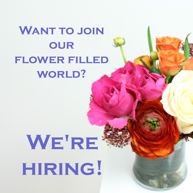 periwinkle is hiring