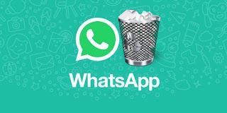 Cara Melihat Pesan Whatsapp Yang Sudah Di Hapus Dengan Aplikasi WhatsRemoved+