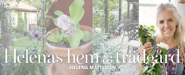 Helena's Hem och Trädgård
