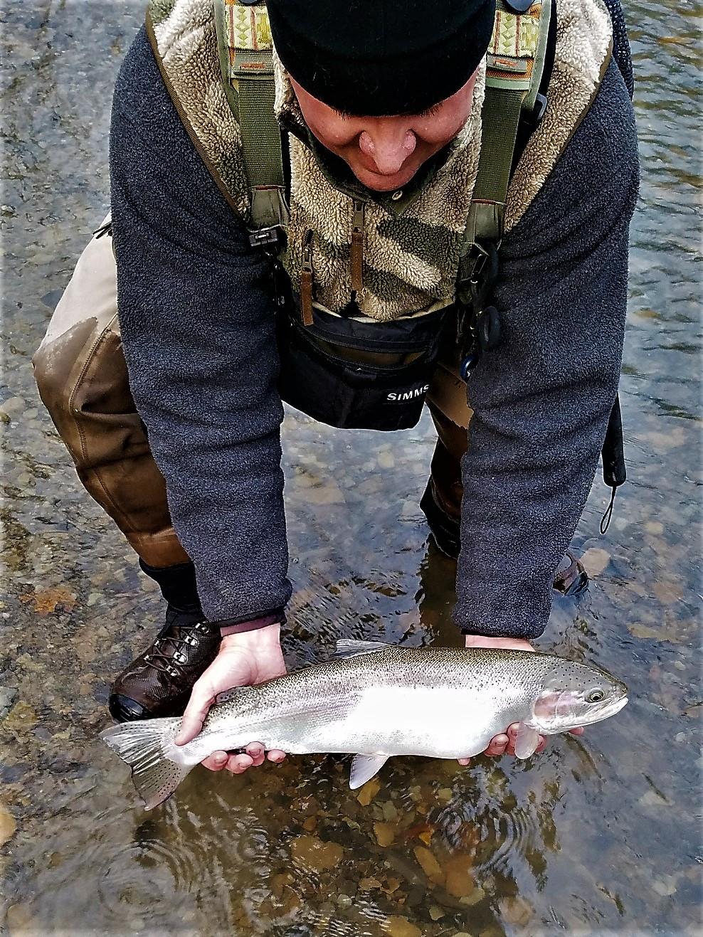 wny fly fishing wny fly fishing stream report 11 17 2017