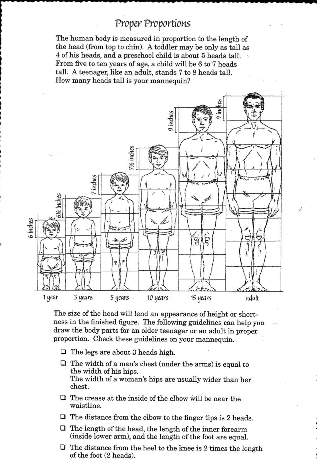 Human Proportions With Images