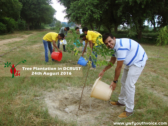 Annual Tree Plantation Camp 2016 in Deenbandhu Chhotu Ram University of Science and Technology Murthal by Youth Welfare Federation