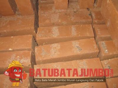 supplier batu bata jumbo