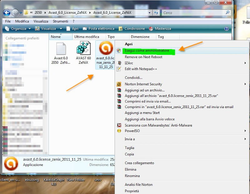 how to allow a file in avast