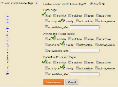 Custom Robots Header Tags Setting in Blogger