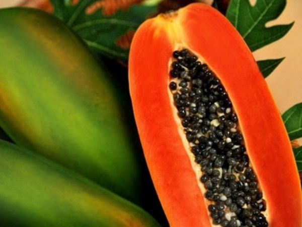 Diet buah pepaya