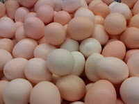 Makanan Yang Meningkatkan Kualitas Dan Jumlah Sel Telur  Pada Program Bayi Tabung