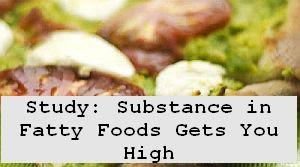 https://foreverhealthy.blogspot.com/2012/04/study-substance-in-fatty-foods-gets-you.html#more