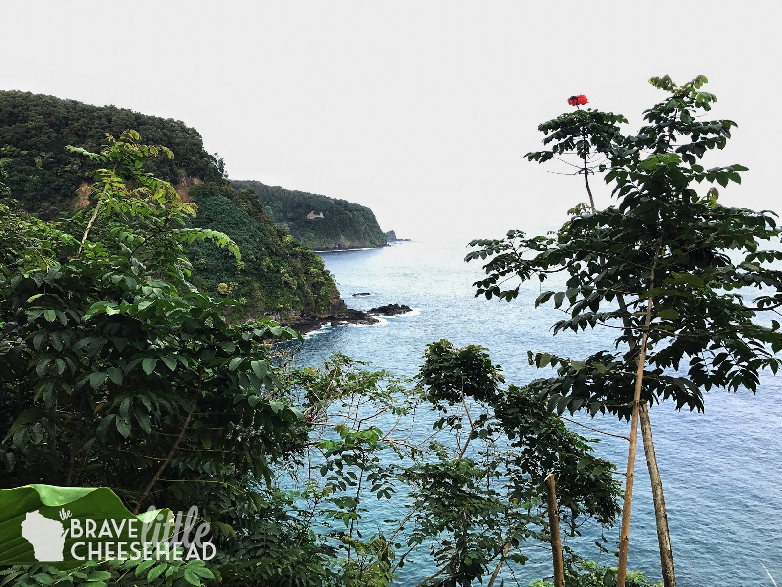 Our Top Five Tips for Traveling the Road to Hana | The Brave Little Cheesehead at bravelittlecheesehead.com