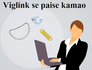 Automatic Affiliate (Viglink) Link se Website par paisa kamaye in hindi step by step | delhi technical hindi blog !