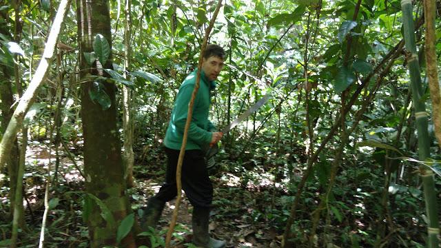 machete in Amazon