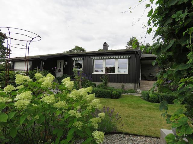 Tips til hagedesign. Foto tatt fra utsiden av hekken i Furulunden.