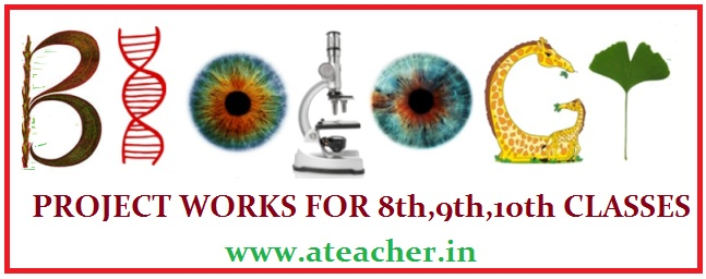 C.C.E BIOLOGY PROJECT WORKS FOR 8th,9th,10th CLASSES
