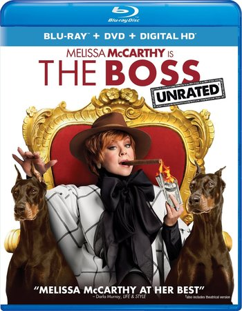 The Boss (2016) Dual Audio Hindi 480p BluRay 300MB