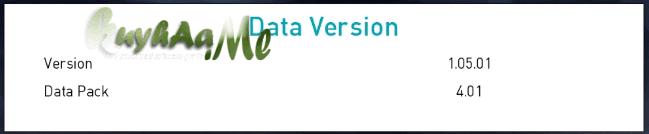 datapck 4.01