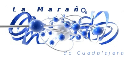 Asociación La Maraña de Guadalajara. EPSJ