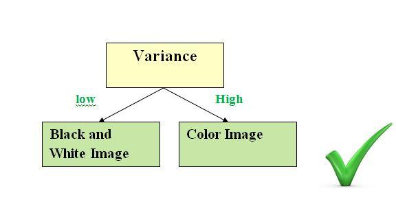 Decision Tree | IMAGE PROCESSING