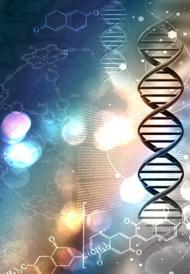on genetic engineering enhancing humans through science is beneficial Genetic engineering, also called genetic modification,  an organism that is generated through genetic engineering is considered to be a genetically modified organism  gene therapy is the genetic engineering of humans,.