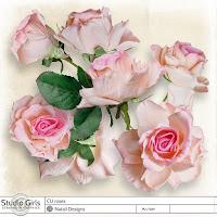 http://shop.scrapbookgraphics.com/CU-roses.html