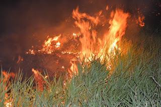 http://vnoticia.com.br/noticia/1953-incendio-provoca-transtornos-a-moradores-e-interrompe-aula-na-escola-modelo-em-sfi