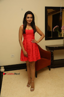 Actress Catherine Tresa Latest Pos in Red Short Dress at Intex Air Conditioners Launch  0029.jpg
