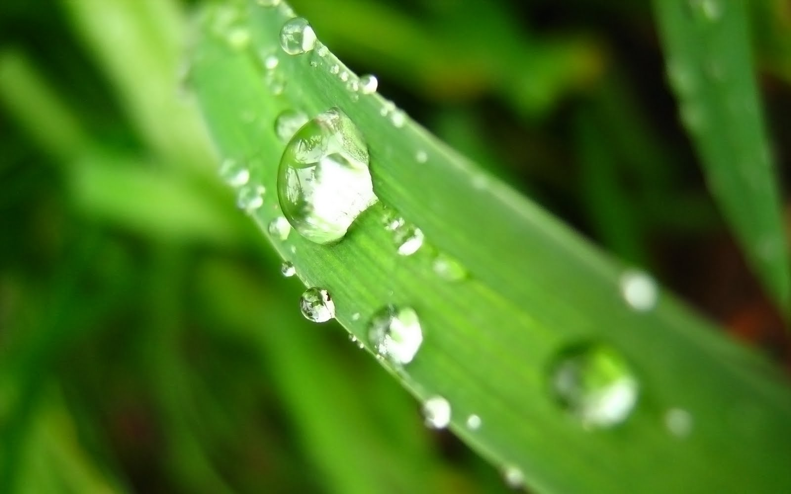 3d Wallpapers For Nokia E63 Cool Images Rain Wallpapers
