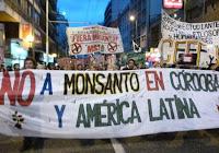 Monsanto, Patentes, Transgenicos, America Latina, Argentina, OMG, Ge netica,
