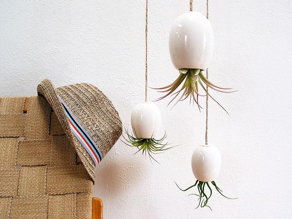 porzellan senf und prosecco pflanzen stilvoll und urban. Black Bedroom Furniture Sets. Home Design Ideas