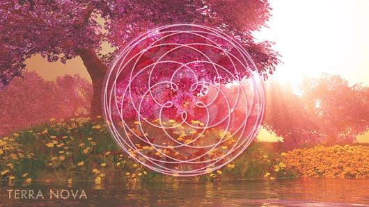 Кобра.  Планетарная Активация Сестричества Розы.  Суббота, 16 июня 2018 г.    TreeRoseVenus