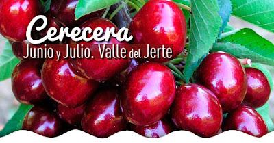 Cerecera 2017. Valle del Jerte