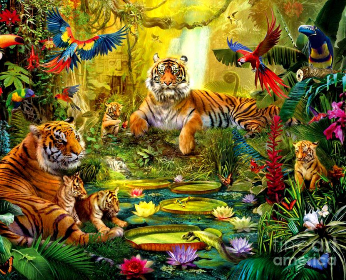 Rainforest Wallpaper With Animals