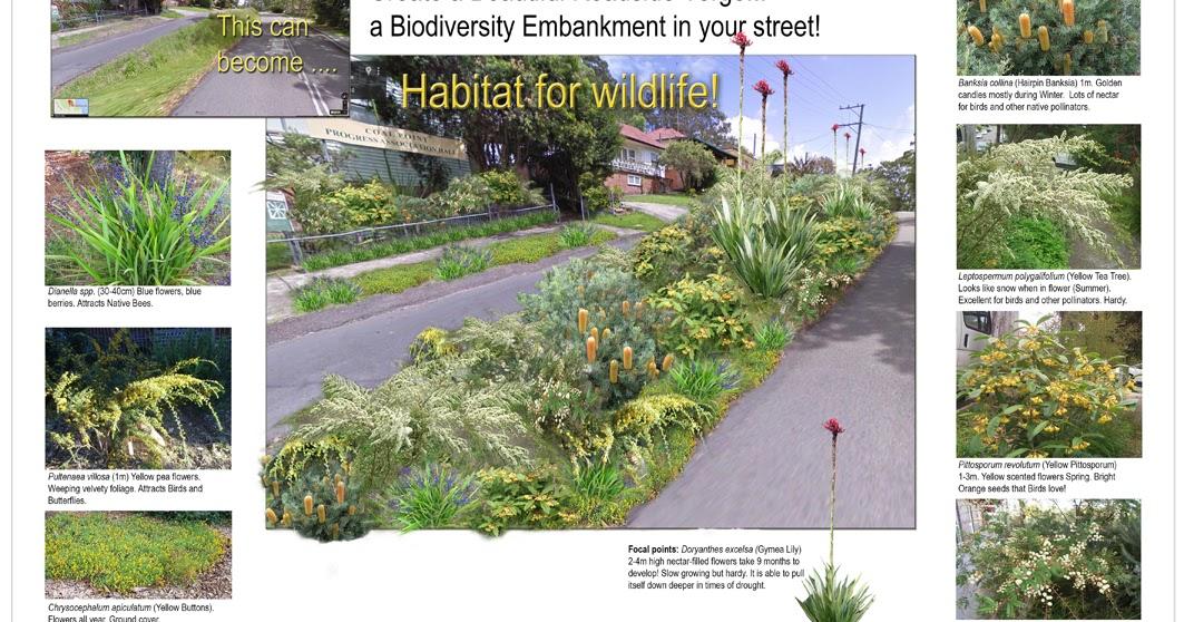 Roadside Stand Designs : The coal point chronicle roadside verge embankment