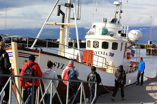 Barco en el que nos subimos para ir a ver ballenas