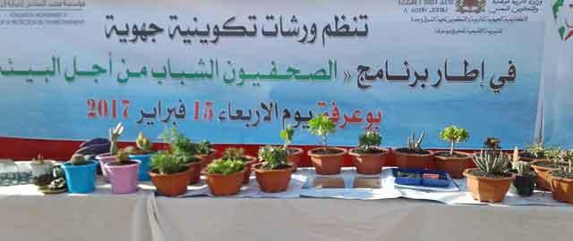 مديرية فجيج بوعرفة:ورشات جهوية في إطار برنامج المدارس الأيكولوجية