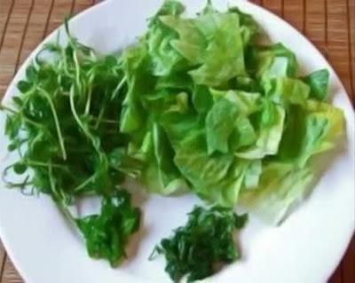 ประเทศลาว สลัดหลวงพระบาง (Luang Prabang Salad)