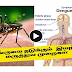 How to Prevent and Treat Dengue:  Home Remedies