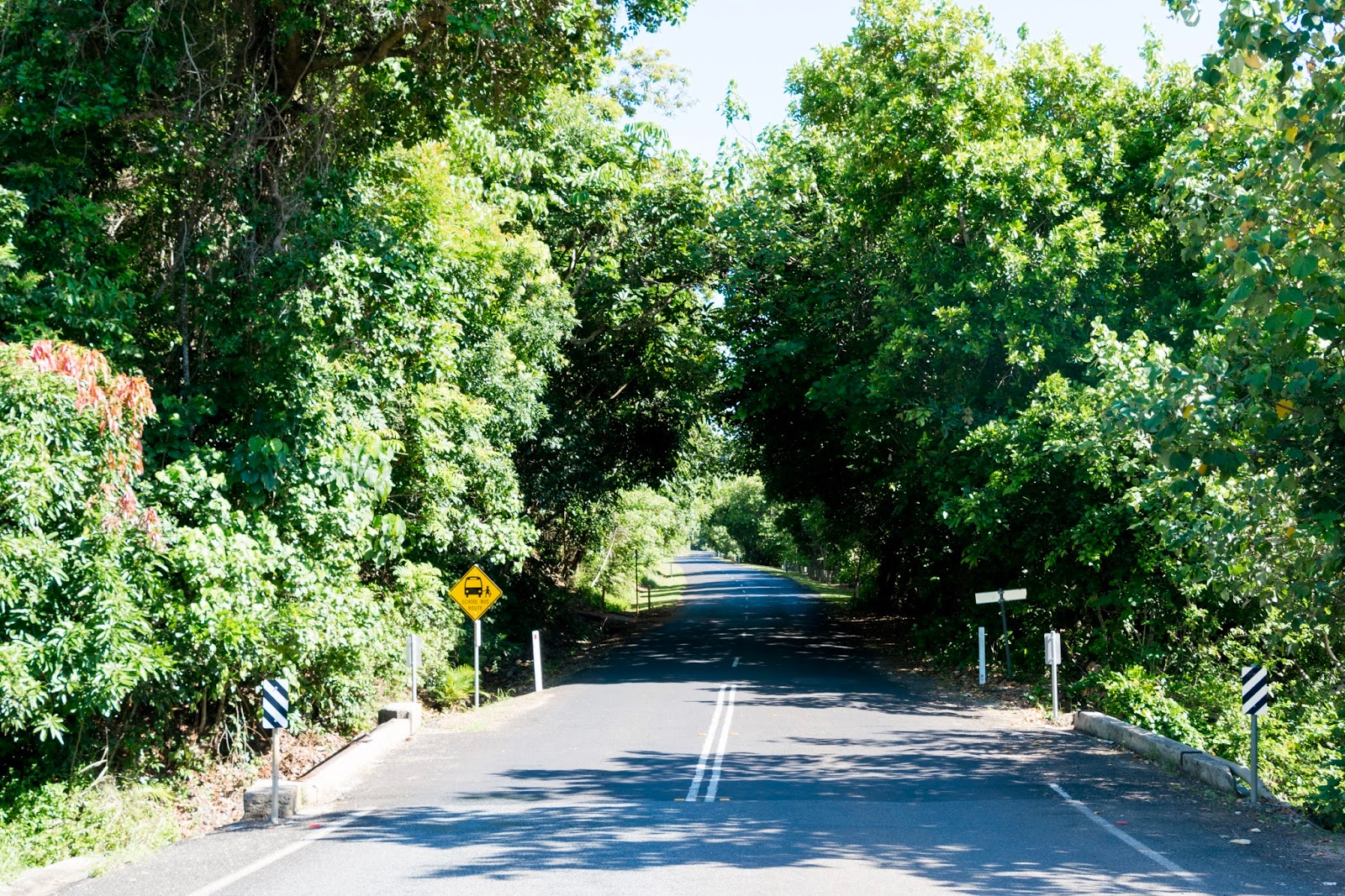 road to the atherton tablelands