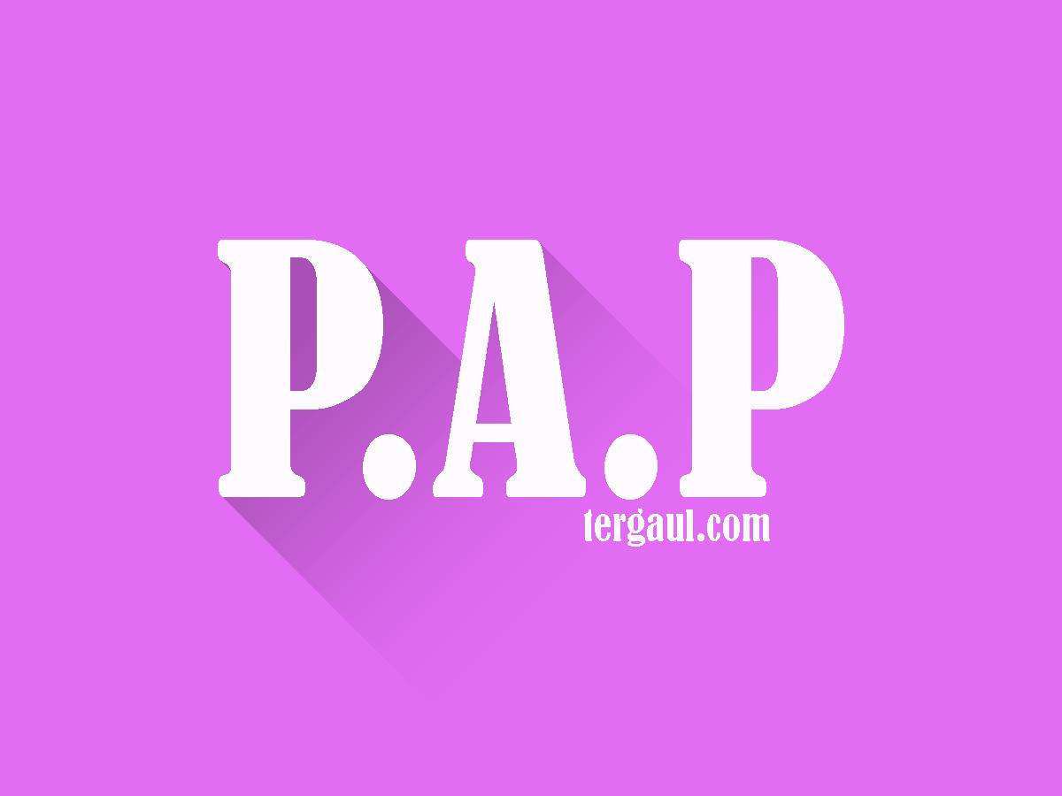 Arti PAP