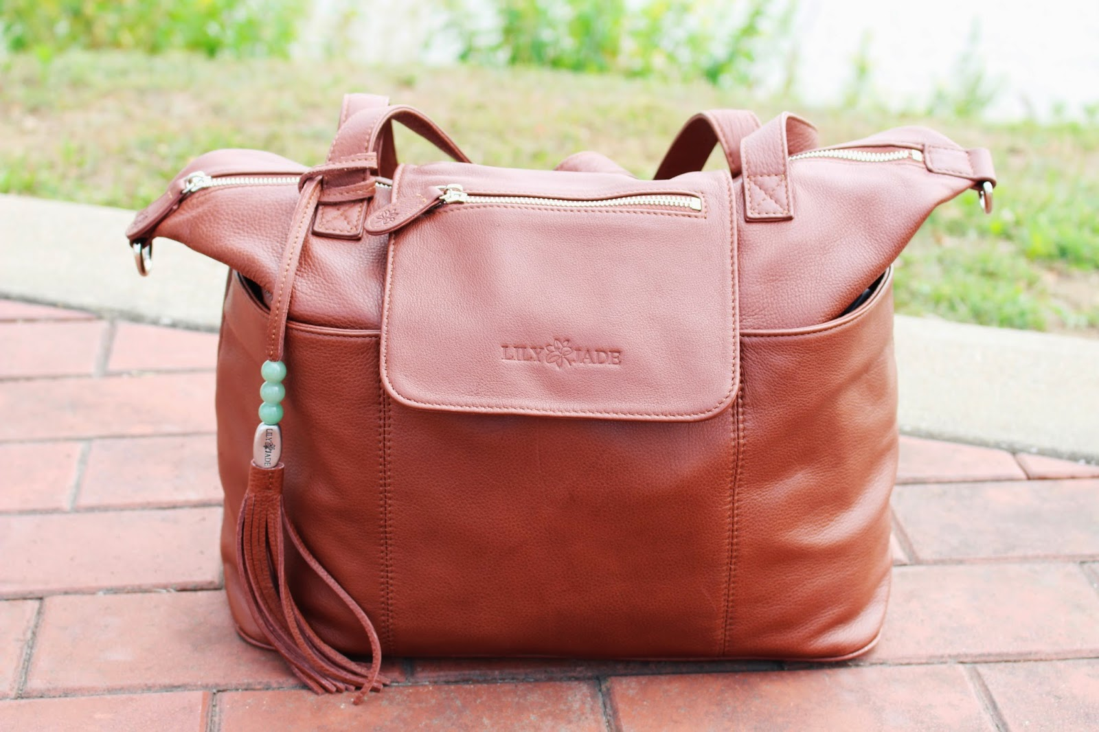 927254dd17df Well thank goodness I found Lily Jade Designer Diaper Bags. Not only does  it not look like a diaper bag