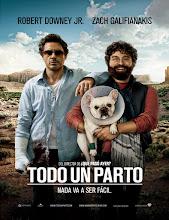Due Date (Todo un parto) (2010)