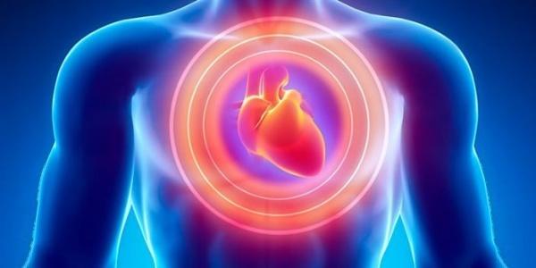Η Αλτσχάιμερ ίσως χτυπά και την καρδιά