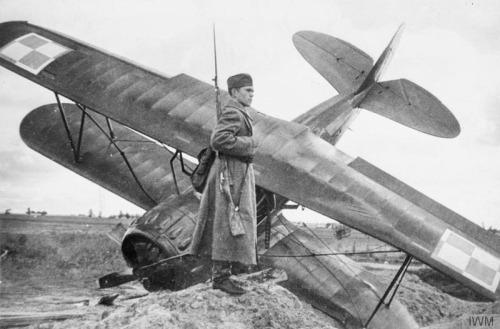Polish Air Force worldwartwo.filminspector.com crashed Polish trainer