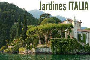 Jard n bot nico de padua cultivo de los simples y for Jardines italianos