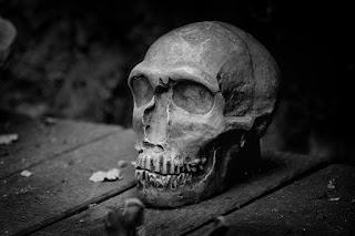 صور خلفيات رعب للفيس بوك 2019 غلاف وبوستات رعب skull-823048_960_720