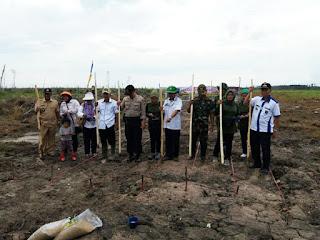 Kodim 0402 OKI/OI Dan Dinas Pertanian Tanam Serentak Di Desa Ujung Tanjung Kec Tulung Selapan