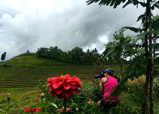Cadapdapan Rice Terraces - Candijay, Bohol
