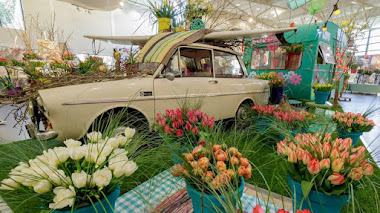Keukenhof 2017: Exhibición floral en el Pabellón Oranje Nassau
