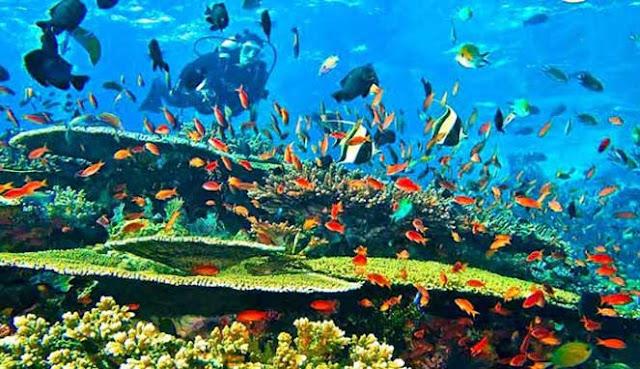 ialah daerah pelestarian alam laut di Indonesia yang terletak sekitar  7 TAMAN LAUT INDAH DI LEPAS PANTAI JAKARTA